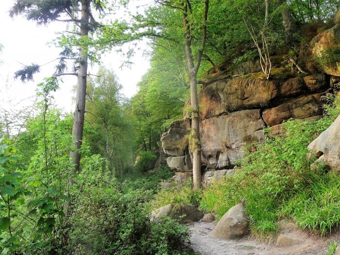 Favourite Walks: Harrison's Rocks